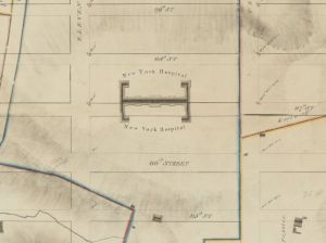 Randal Farm Map of 1818-1820 showing The Bloomingdale Insane Asylum